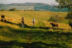 kocaba_bike_trip_czech_bike_tours-800x570